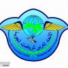 """الاتحاد العربي للرياضات الجوية : ربط رخص الطيران الخفيف بالـ""""PPL"""" مخالفة دولية"""