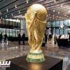 الفيفا يؤكد عدد المقاعد في مونديالي روسيا و قطر