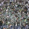 الجماهير السعودية تطالب : أول الحلول إقالة لوبيز