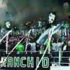 مولودية بجاية يتأهل إلى نهائي كأس الجزائر