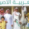 اختتام فعاليات البطولة الوطنية لجمال الخيل العربية الأصيلة