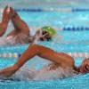 اتحاد السباحة يدفع مدربي و سباحي الاندية للتطوير