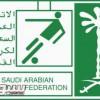 الاتحاد السعودي ينفي زيادة أندية دوري جميل