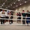 اتحاد الملاكمة يتعاقد مع 3 مدربين (كوبيين)
