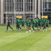 الأخضر يواصل تدريباته ضمن معسكره في فرانكفورت