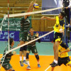 في البطولة العربية الـ 14 لكرة الطائرة للناشئين : الاخضر يؤكد صدارته بنقاط فلسطين
