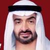 محمد بن زايد: مصر شرفت العرب