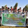 فرقتا الخندق الكشفية تشاركان في خدمة البيئة بالجوف