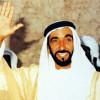 آل الشيخ يطلق مسمى الشيخ زايد على النسخة الحالية من البطولة العربية للأندية