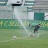 تغطية تدريبات المنتخب البرازيلي على ملعب النادي الاهلي – عدسة خالد السفياني