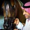 (عبيَّه) مهرجان سعودي يجمع الثقافة والتاريخ والترفيه ومُواكباً لرؤية 2030