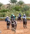 نادي سباقات الخيل يعلن القائمة النهائية لمهرجان كؤوس الملوك