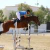 الشربتلي يفوز بالجائزة الكبرى في القفز على الحواجز