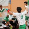 بالصور: يد الأهلي تتجاوز النفط وتصل لنهائي البطولة العربية