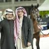 مربط المعود يعانق التفوق في بطولة الرياض لجمال الخيل العربية