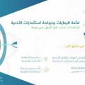وزارة الرياضة ممثلة بالإدارة العامة للاستثمار تستحدث لائحة الرعايات وحوكمة استثمارات الأندية