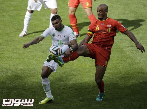 بلجيكا الجزائر 14