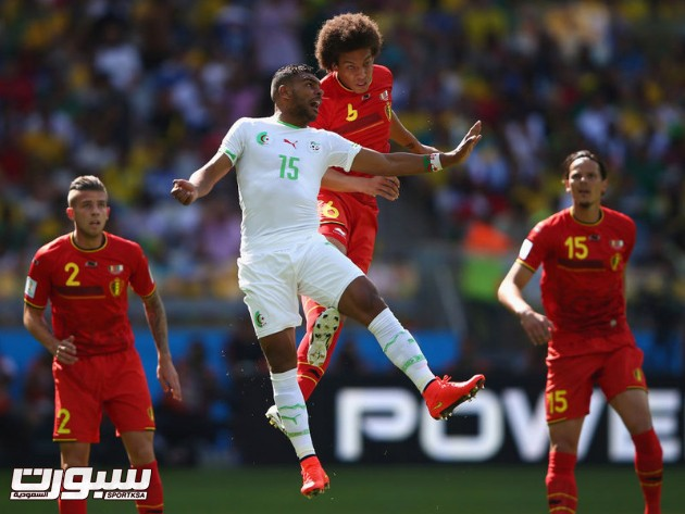 بلجيكا الجزائر 4