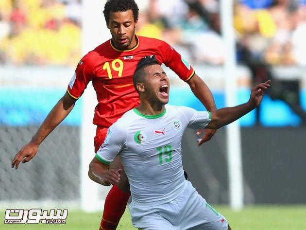 بلجيكا الجزائر 8