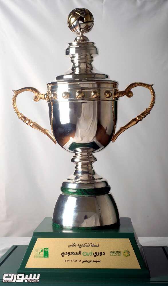 كأس دوري زين